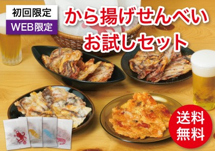 【WEB限定】【送料無料】から揚げせんべいお試しセット