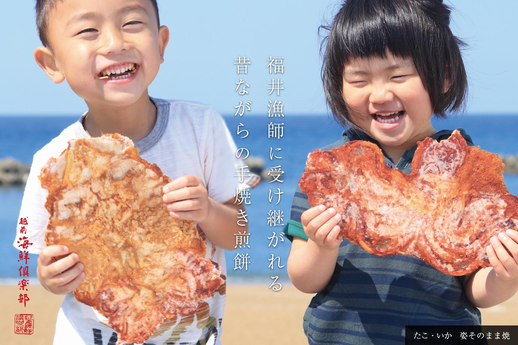 せんべい たこ えびせん家族オンラインショップ【愛知県三河特産スギ製菓】